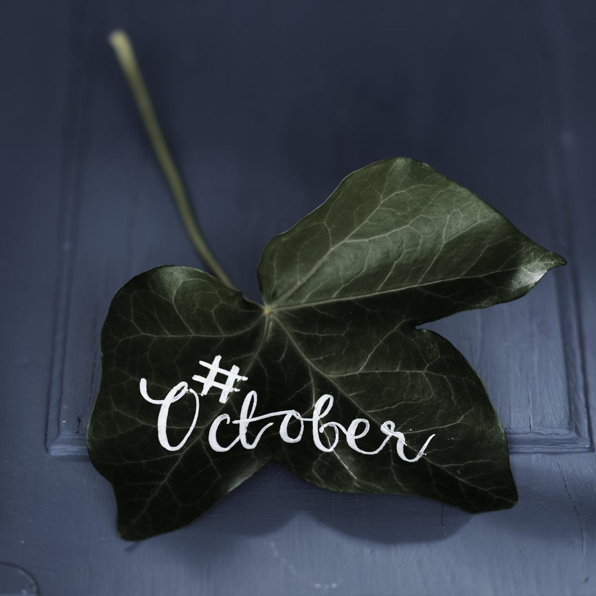 Kan man skriva på löv?